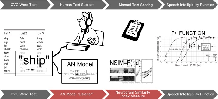 Predicting Speech Intelligibility